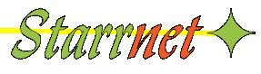 David Starr's Place Retina Logo